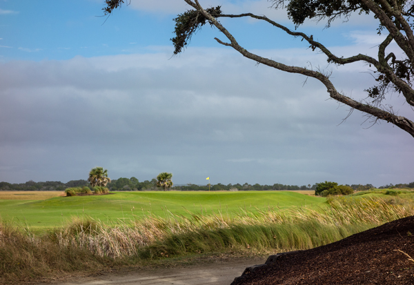 The Third Green @ The Ocean Course