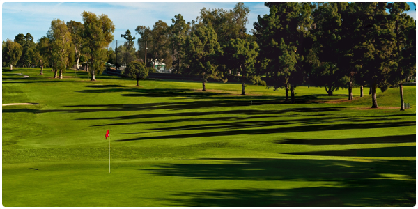 Recreation Park Golf Course | Forelinx