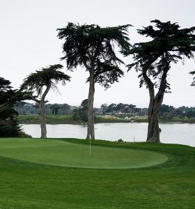 TPC Harding Park - Golf