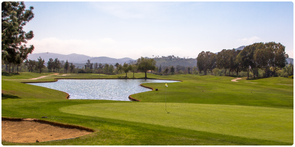 The Vineyard at Escondido | Forelinx