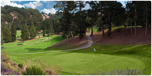 Tilden Park Golf Course | Forelinx